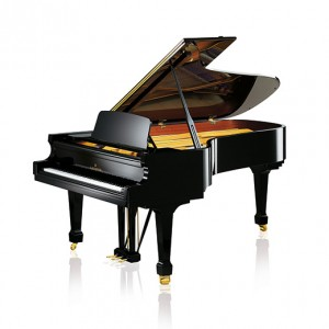 C.BECHSTEIN  A228 semi-concert grand piano